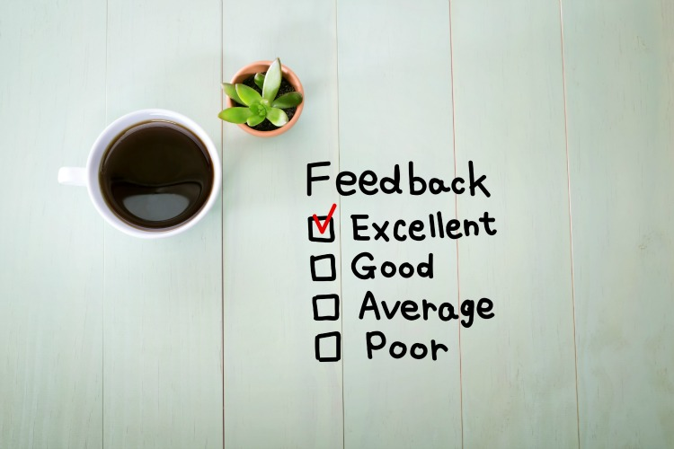 The Role of Feedback in Evaluating and Improving Performance Levels